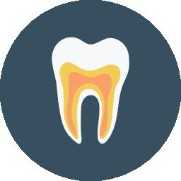 Intraoral Dental Cameras