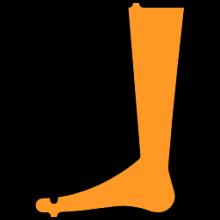 Leg Lifters
