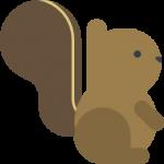 The 5 Best Squirrel Feeders Reviewed