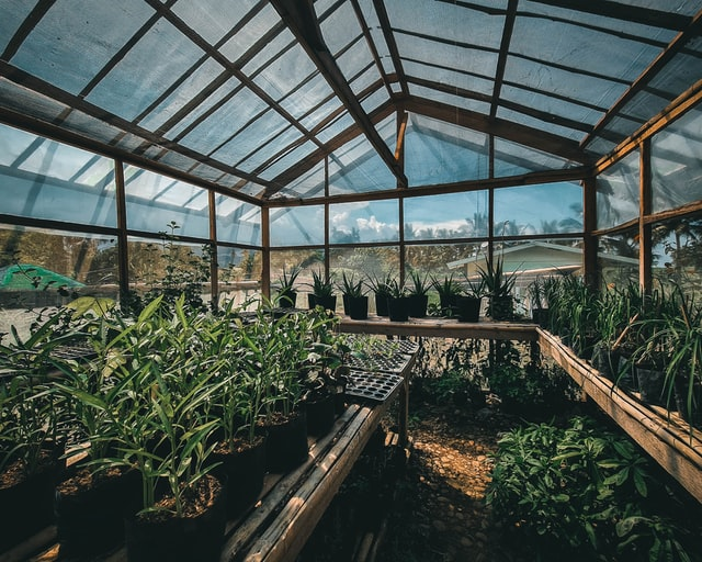greenhouse building tips